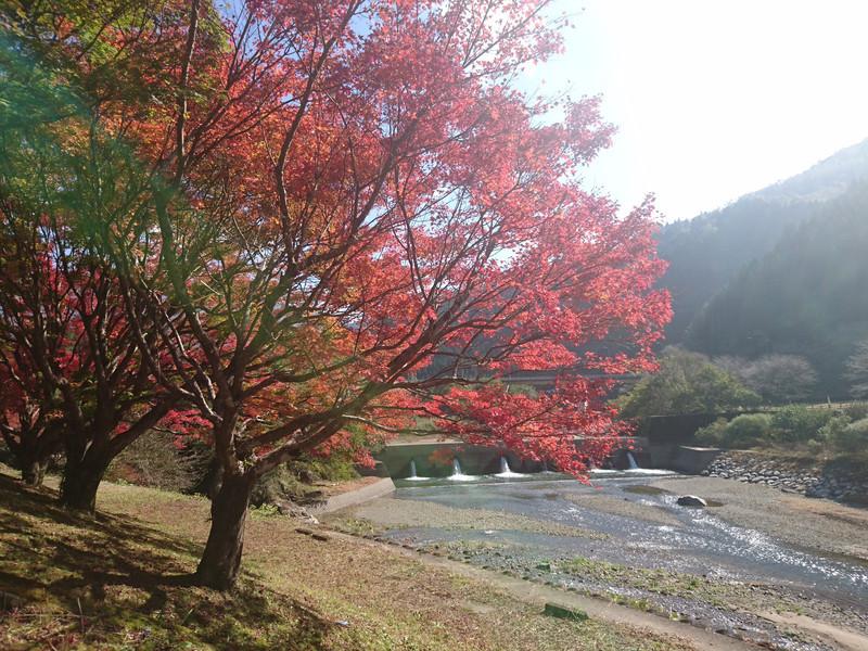 秋フェスタin水上